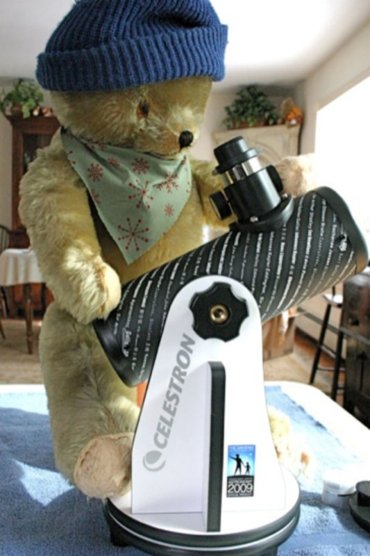 Teddy Bear's Scope