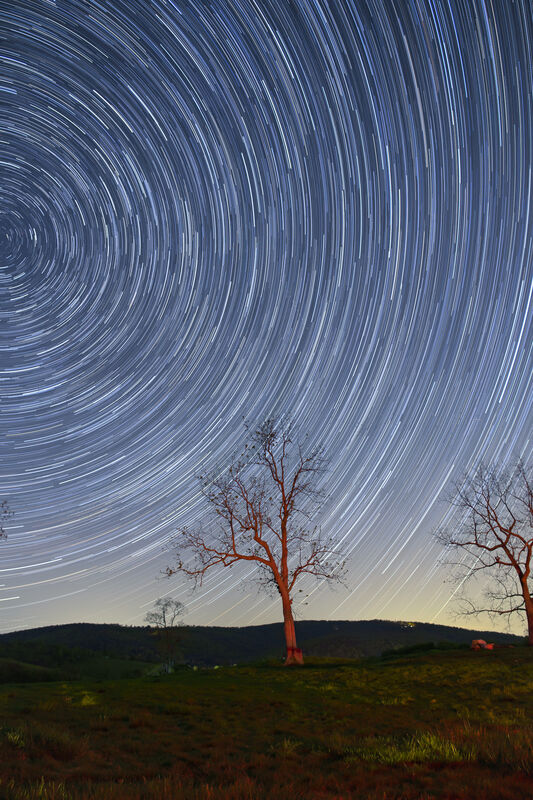 Startrails over Sky Meadows State Park, NOVA