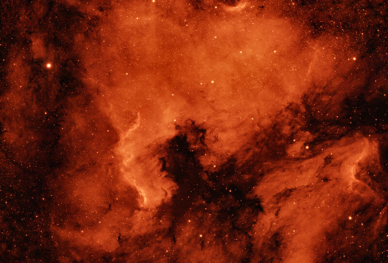 North American Nebula Ha / Oiii in HOO palette.