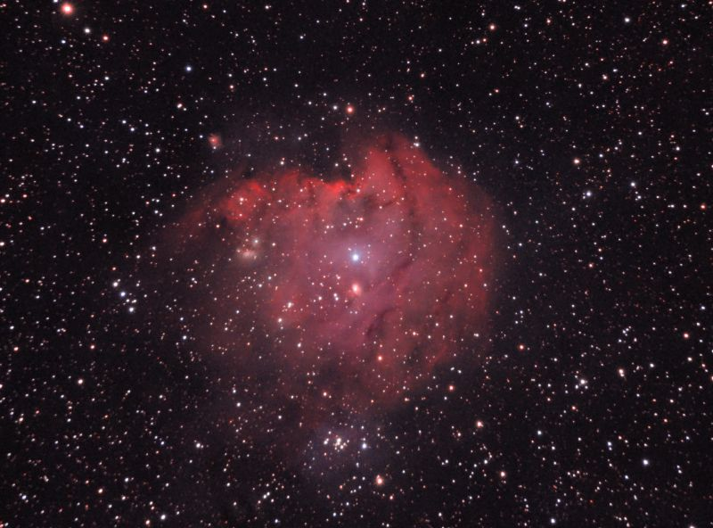NGC 2174 / Monkey Head Nebula