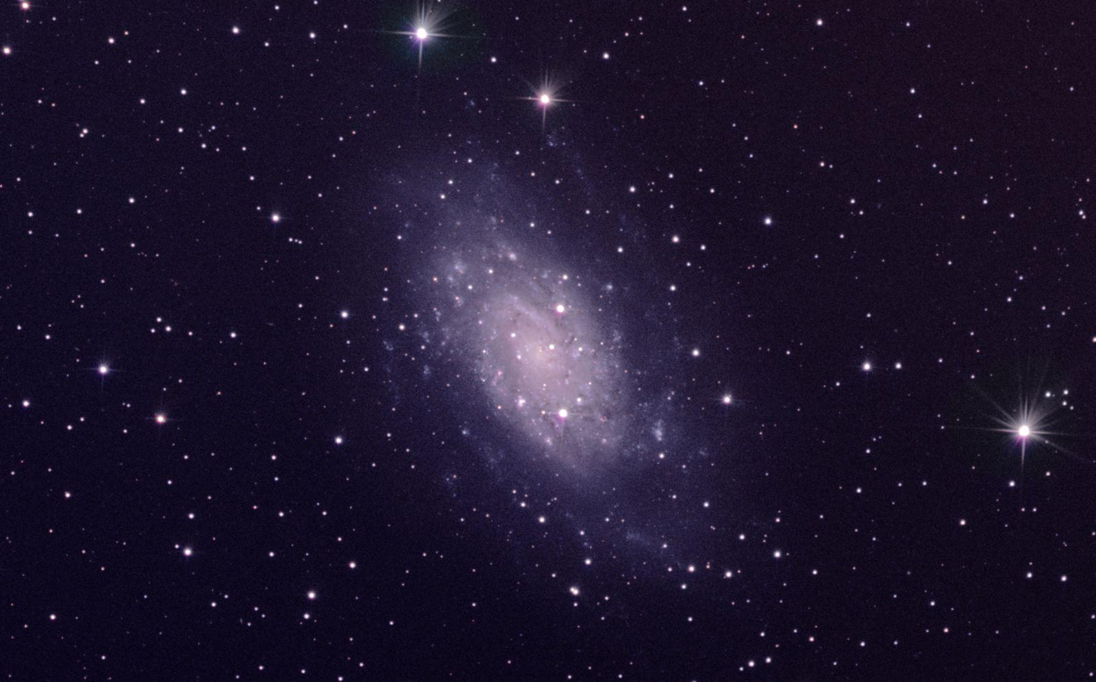 NGC2403 20190209 Newt10 QHY183M FW361 01