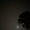 No Orionids But Waning Moon