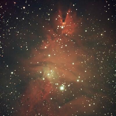 NGC 2264 Christmas Tree Cluster