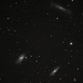 M65 M66, And NGC 3628 80mm APO UVIR filter Native F6 cropped7Stack 92frames 920s