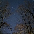 Orion's Belt from my Driveway