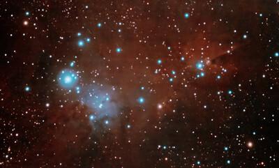 NGC2264-ChristmasTree-2nights_DSS_SiriL_AP-TD