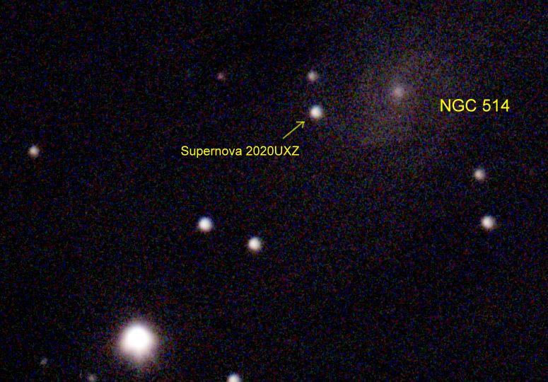 NGC 514 Supernova 2020UXZ