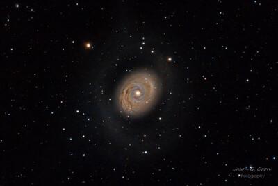 M94 Crocs Eye Galaxy