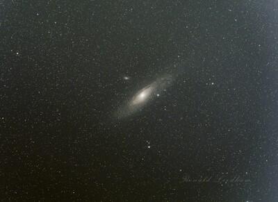 M31 In Andromeda   California   2019