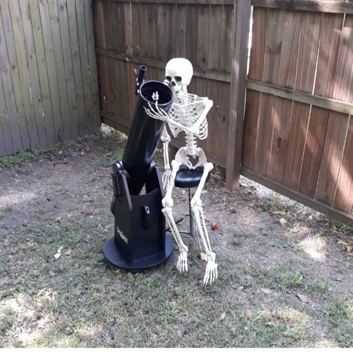 StarGazingSkeleton