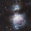 Orion Revisited