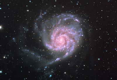 """M101 Pinwheel - 12"""" SCT"""