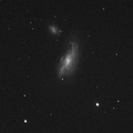 NGC4490 Stack 31frames 248s WithDisplayStretch