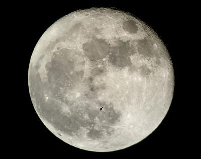 Bat+Moon