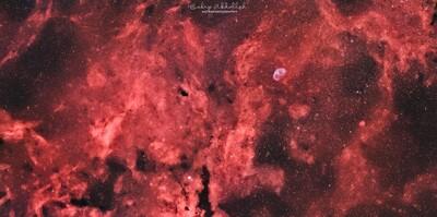Cygnus Region - Mosaic