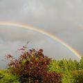 Bright double rainbow 30/05/07