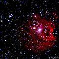 NGC2175