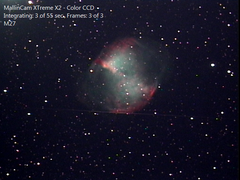 M27 with a friend