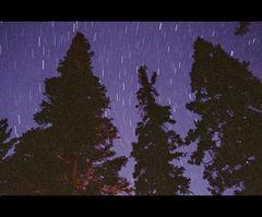 Campfire Stars 1