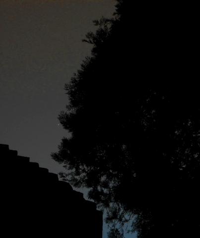 Venus.18.11.16.DSN4006 crop