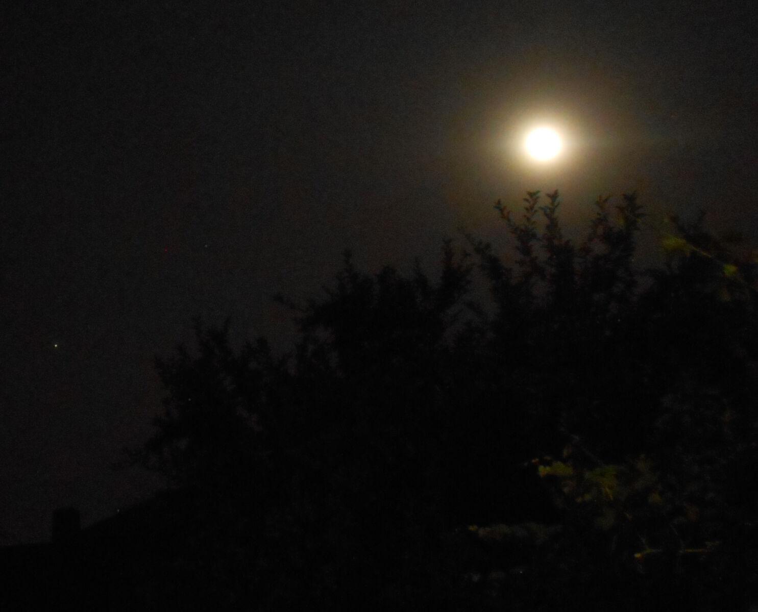 Luna.Jupiter.14.06.19DSCN7466 216   Copia