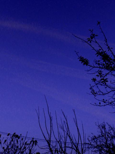 Twilight.contrails.18.11.16.DSCN3985