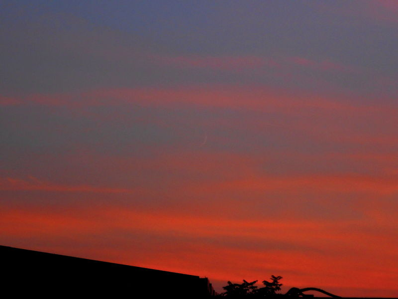 Two days Old New Moon and Venus 3.09.16
