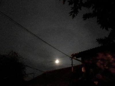 Moon halo 23.04.16