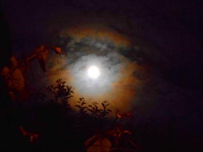 Moon Corona 20.05.16.v5