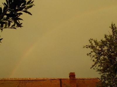 Rainbow.20.06.16.v3