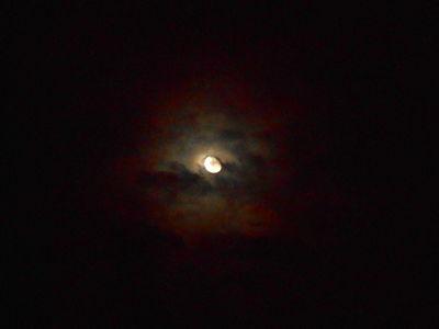 Moon Corona 19Oct 2016.DSCN3604