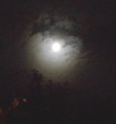 Moon Corona 20.05.16.v1