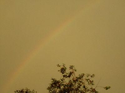 Rainbow.20.06.16