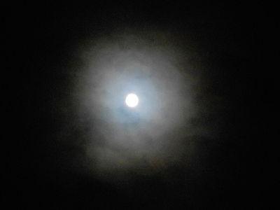 Moon Corona.Super Moon.13.11.16.DSCN3974