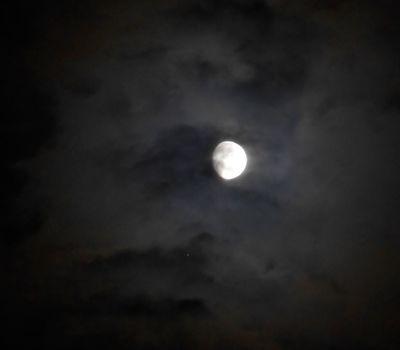 Luna Jupiter.7.05.DSCN5247.v1