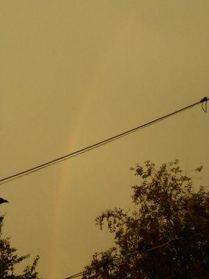 Rainbow.20.06.16.v1