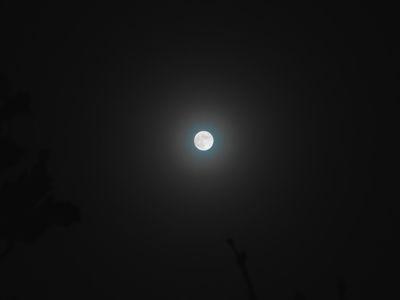 Luna.10.02.17.DSCN4585