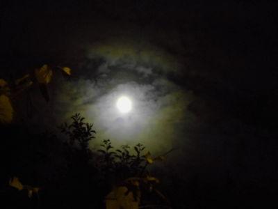 Moon Corona 20.05.16.v6