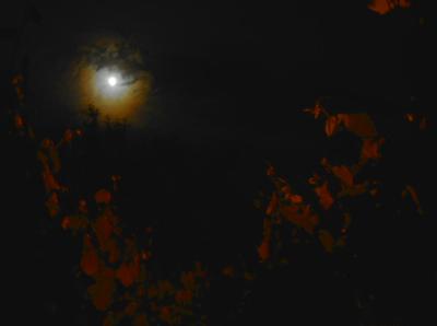 Moon Corona 20.05.16.v2