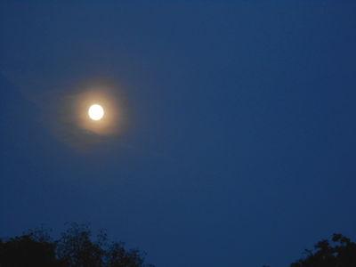 Hunter Moon-nearly.corona and contrails.14.10.16.DSCN3557