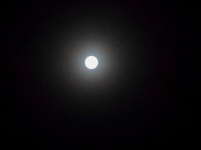 Luna.10.02.17.DSCN4567