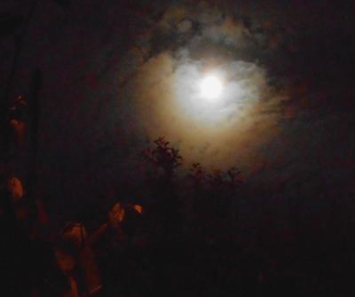 Moon Corona 20.05.16.v3