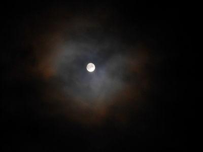 Moon Corona.Super Moon.13.11.16.DSCN3972