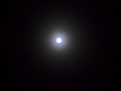 Luna.10.02.17.DSCN4569