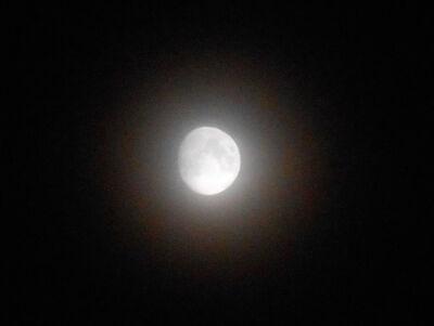 Luna.14.06.19DSCN7476 206