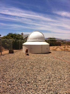 RLD Observatory