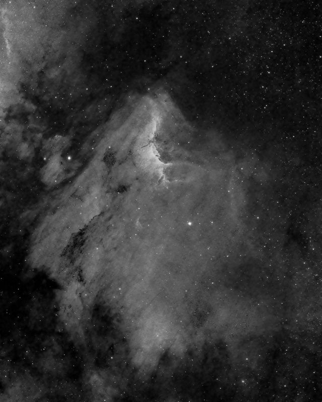 Pelican Nebula in Ha, 8-16-13