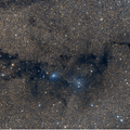 LDN 767, 768 and 769 (Dark Nebulae); vdB 126 and LBN 133 (Reflection Nebulae)