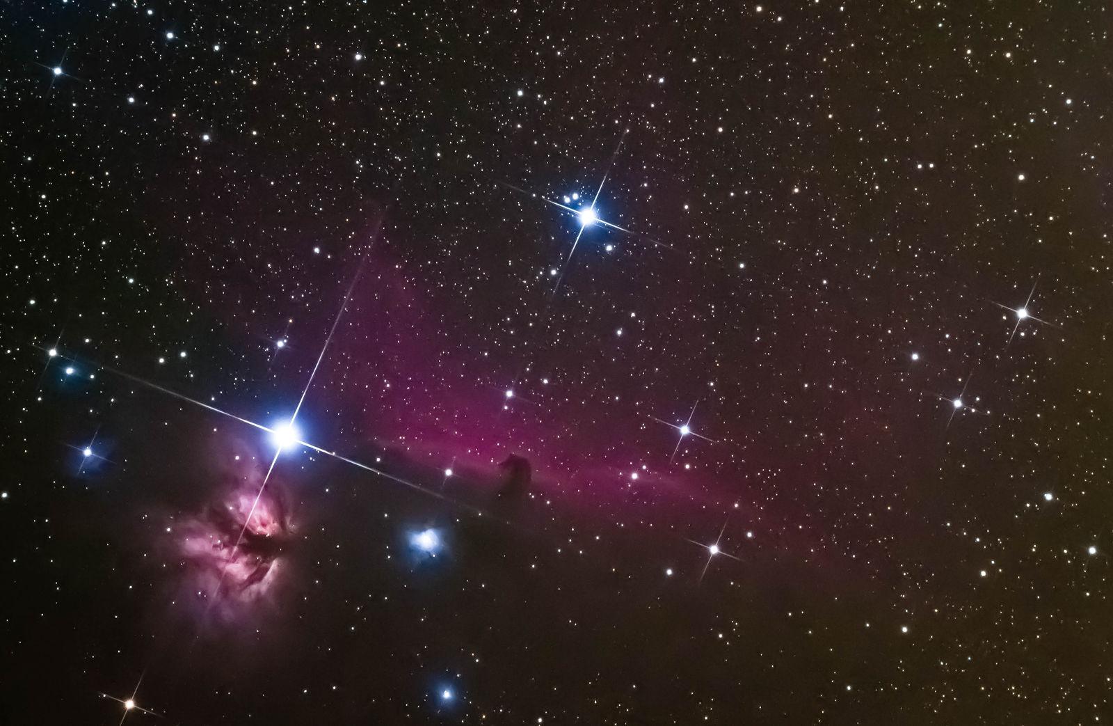 Horsehead Nebula (Size: Large) - First Light - Photo ...