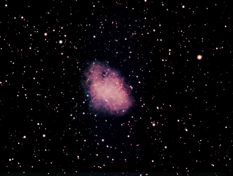 M1 contrast the ownership and